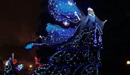 Beautiful Parade Tokyo Disneyland Electrical Parade Dream lights